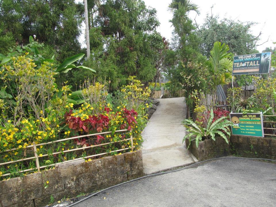 Best Places to visit in Meghalaya